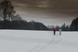 Sommer & Winter Fotogalerie wanatu