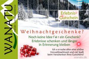 Weihnachtszeit-Geschenkgutscheine